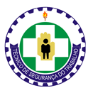 Técnico de Segurança do Trabalho - Os paradigmas da profissão - Armando Henrique